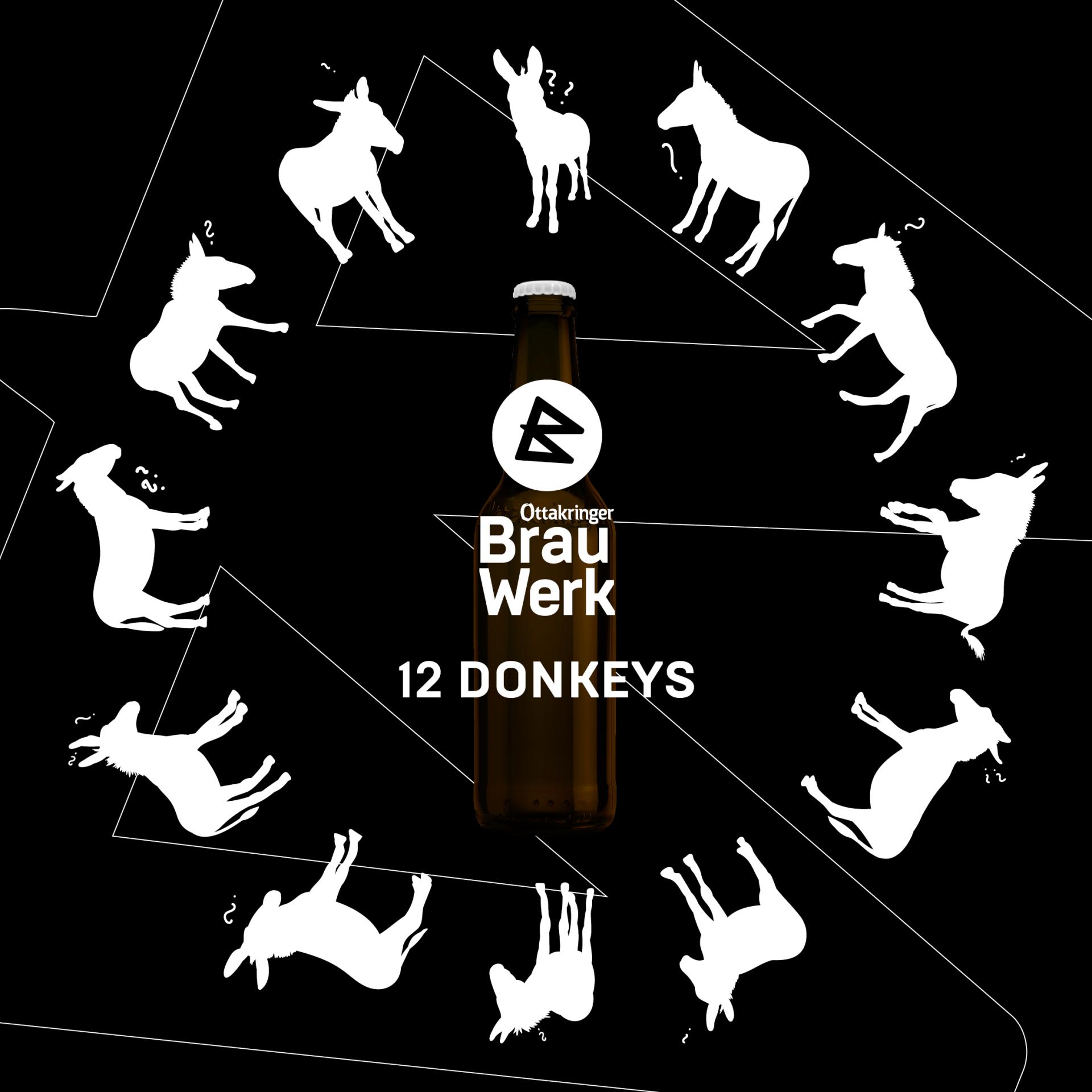 12 DONKEYS